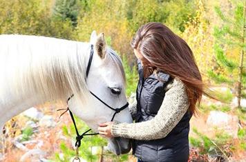 Nyugodt, kiegyensúlyozott ló
